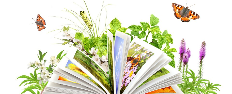 plant-book